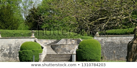 stairs, Abbey of Jumieges, Normandy, France Stock photo © phbcz