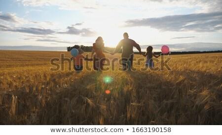 Kicsi vidéki lány búzamező mosoly nap Stock fotó © vladacanon