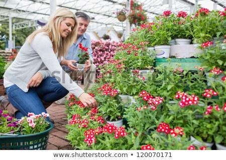 Mature Couple Shopping At Garden Centre Stock photo © HighwayStarz