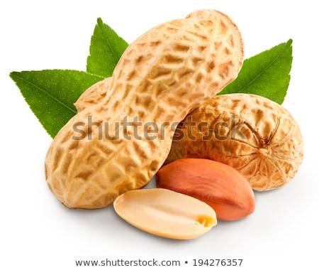 amendoim · isolado · branco · natureza · fundo · cor - foto stock © tetkoren