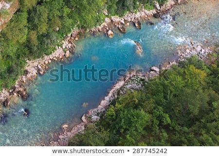 Top rivier Montenegro Europa bos Stockfoto © vlad_star