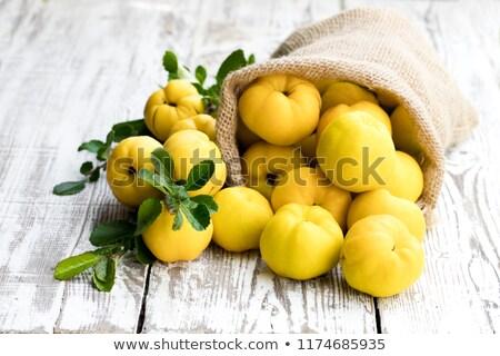 айва · фрукты · филиала · зеленый · студию · фотографии - Сток-фото © peredniankina
