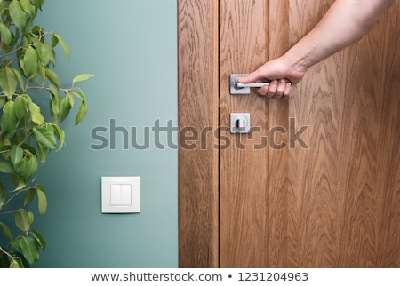 beautiful door handle closeup stock photo © paha_l