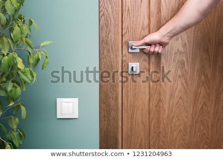 beautiful door handle closeup stock photo © paha_l