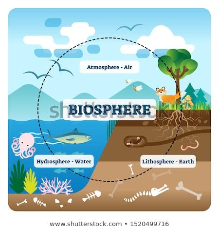 Biosphere Stock photo © guffoto