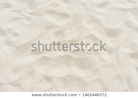 Top view of yellow beach sand texture, summer holiday background Stock photo © stevanovicigor