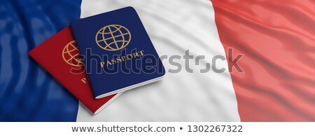 france immigration control stock photo © lightsource