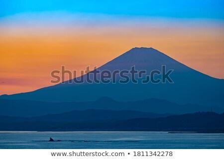 montanha · fuji · nascer · do · sol · Japão · panorama · inverno - foto stock © vichie81