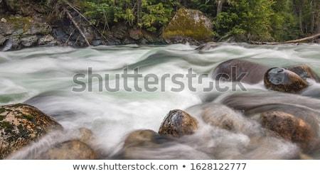 Dağ dere kayalar çağlayan şelaleler Stok fotoğraf © TasiPas