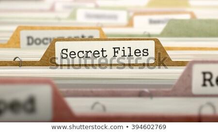 Privacidade arquivo dobrador turva imagem ilustração Foto stock © tashatuvango