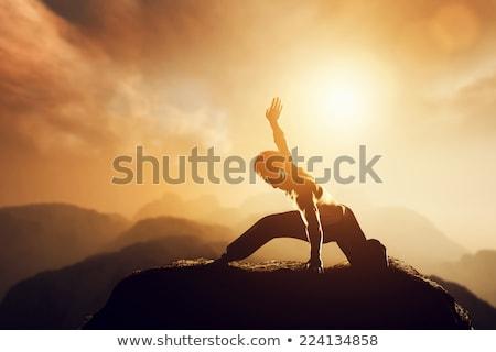 Karatê homem silhueta artista nascer do sol pose Foto stock © Krisdog
