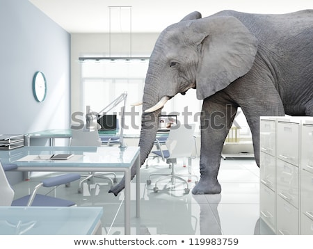 Elephant In The Room Idiom Stock photo © Lightsource