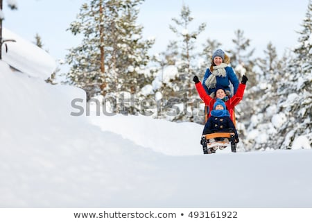 Portrait of young girls with sledge Stock photo © IS2