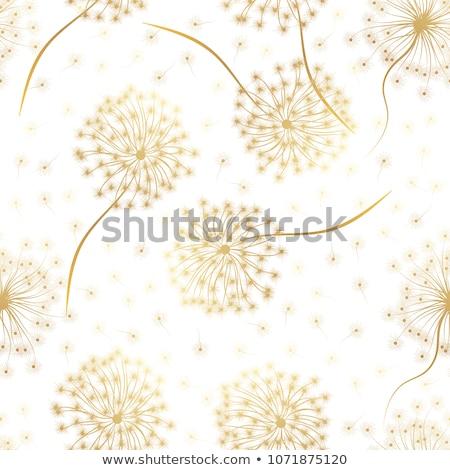 Foto stock: Rabisco · leão · colorido · flor · natureza