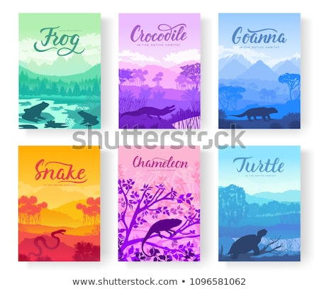 Brochures with varieties of reptiles. Animals in their habitat. Flyers with wild animals in nature.  Stock photo © Linetale