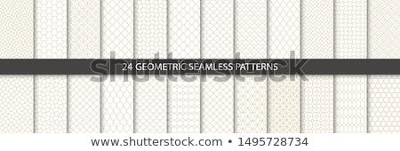 Dekoracyjny wzorców bezszwowy wektora kolekcja luksusowe Zdjęcia stock © ExpressVectors