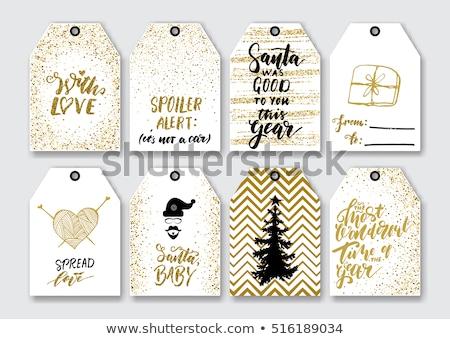 Inverno natal projeto elementos dourado conjunto Foto stock © Voysla