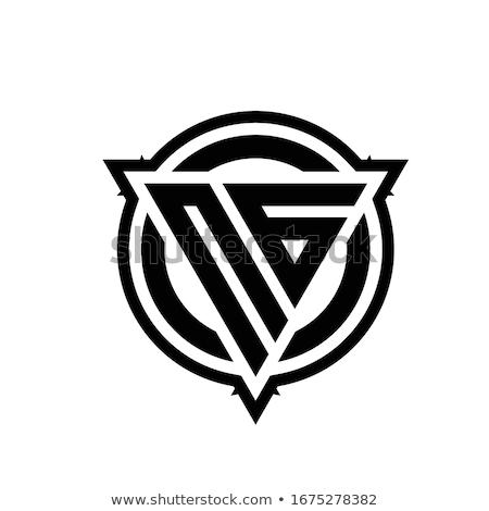 Mértani g betű kör háromszög vektor logo Stock fotó © blaskorizov