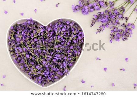 Сток-фото: счастливым · карт · сердце · сирень · цветы