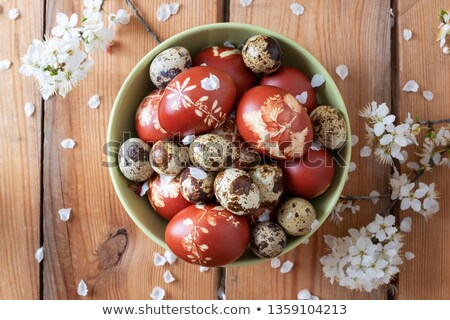 Easter eggs dyed with onion peels and quail eggs in a bowl Stock photo © madeleine_steinbach
