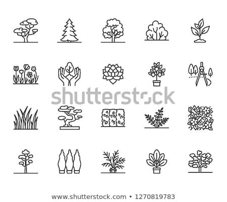 Tree and Bush Pixel Vector illustration Landscape Stok fotoğraf © robuart