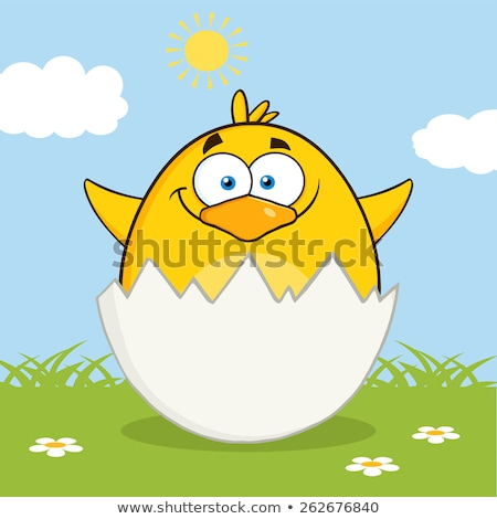 Yellow Chick Cartoon Character Out Of An Egg Shell Stock photo © hittoon