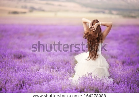 beautiful bride in wedding day in lavender field newlywed woman in lavender flowers stock photo © elenabatkova