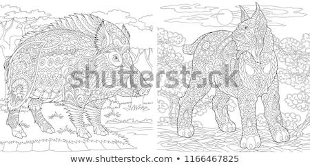 свинья джунгли иллюстрация искусства свинья животного Сток-фото © bluering