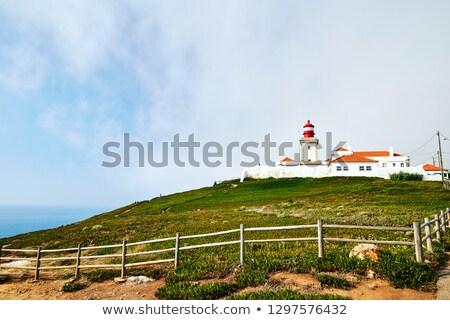 tengerpart · nagy · éles · sziklák · Portugália · napos - stock fotó © frimufilms