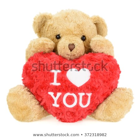 two teddy bears celebrate happy valentine s day stock photo © robuart