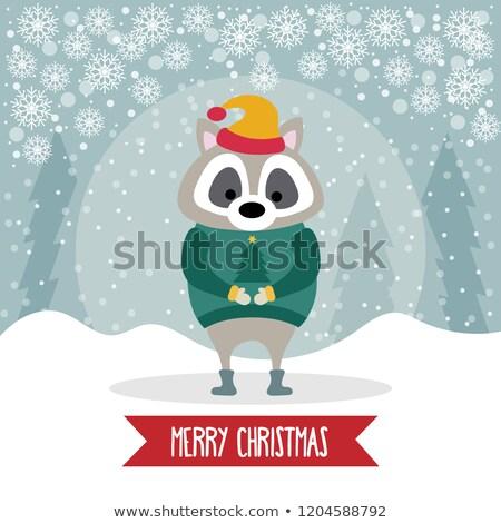 Güzel dizayn rakun Noel poster Stok fotoğraf © balasoiu