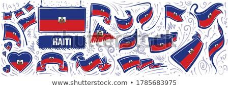 Vettore set bandiera Haiti creativo Foto d'archivio © butenkow