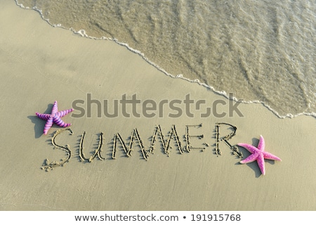 summer word written on the sand Stock photo © cienpies
