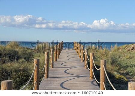 cuerda · puente · agua · nubes · hierba · paisaje - foto stock © photooiasson