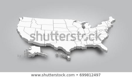map of usa 3d stock photo © dacasdo