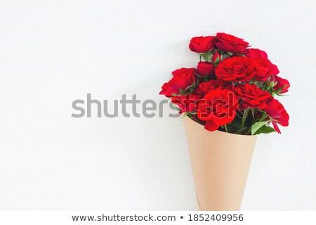frischen · Rosen · rosa · Grenze · isoliert · weiß - stock foto © Anna_Om