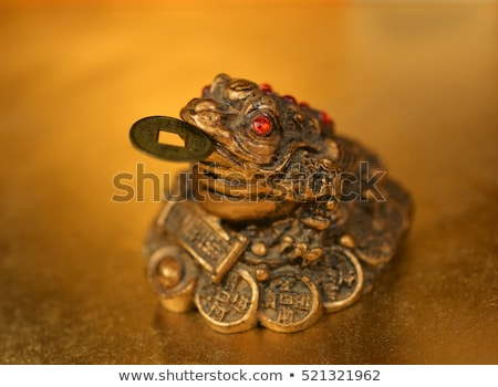 feng shui lucky money frog Stock photo © marylooo