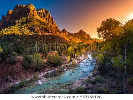 sunset in zion national park stock photo © benkrut