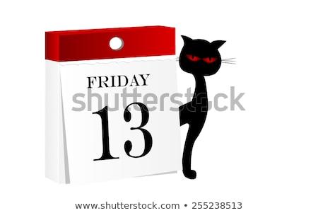 тринадцать · черный · кошек · глаза · глазах · животного - Сток-фото © sigur