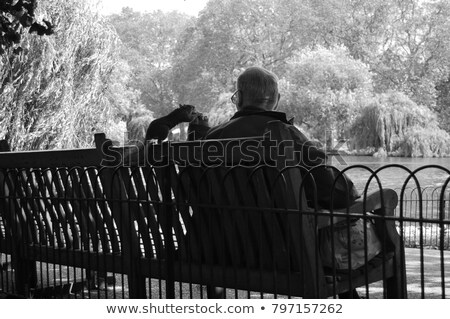 Stock photo: Old man feeding a squirrel in St James Park, London