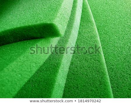 green foam rubber stock photo © pzaxe