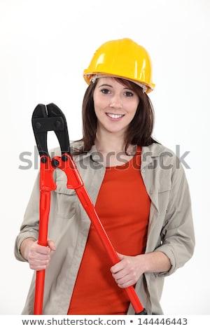 Jovem feminino aprendiz gigante mulheres Foto stock © photography33