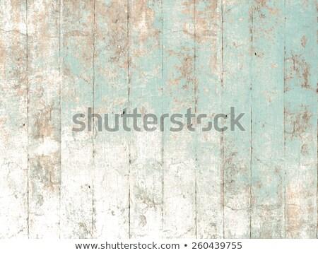 Vintage pintar textura parede verde Foto stock © shutswis
