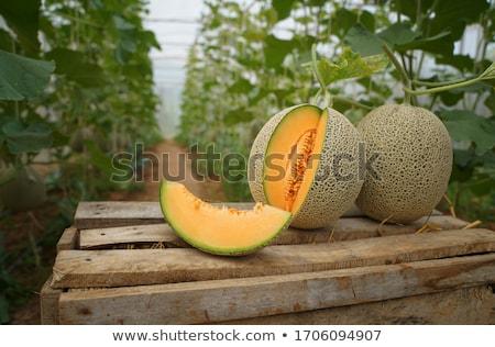 Dinnye full frame citromsárga étel mezőgazdaság édes Stock fotó © prill