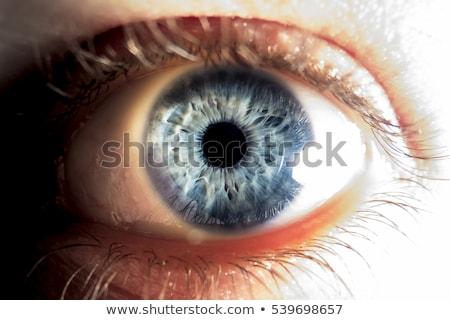 open eyes Stock photo © carlodapino