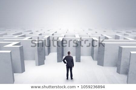 Business maze challenge Stock photo © Lightsource