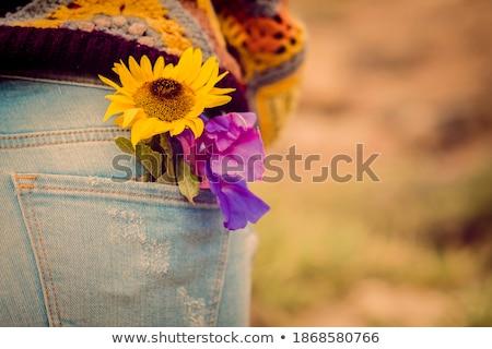 Papatya mavi geri çiçek doğa Stok fotoğraf © gewoldi