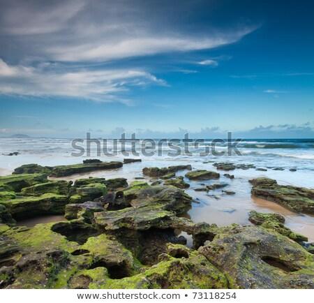 érdekes kövek tengerpart szörf légifelvétel viharvert Stock fotó © jrstock
