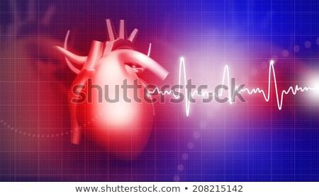 動脈 · 病気 · 医療 · 静脈 - ストックフォト © tolokonov