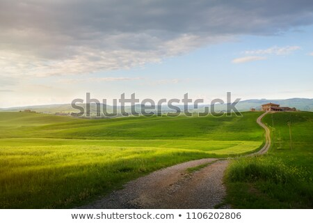 Rolling landscape and Path Stock photo © zzve
